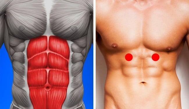 abdominal noktalar