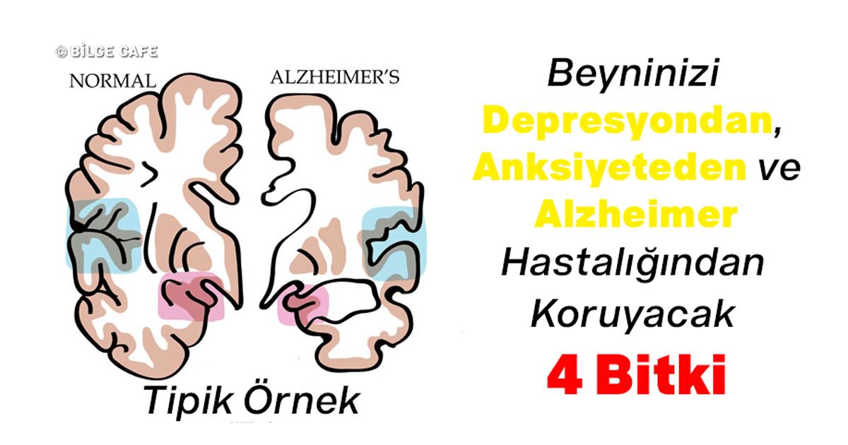 beyinn2