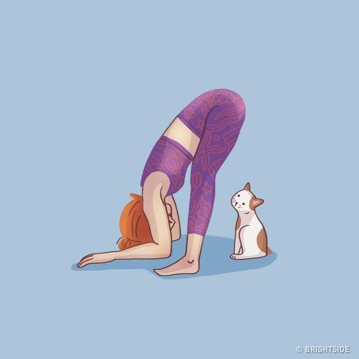 ne eğilme pozisyonu ve kedi