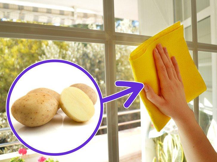 Parlayan Patatesler: Çocuğunuzla Yapabileceğiniz Harika Deney 20