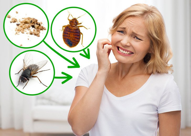 1.böcek