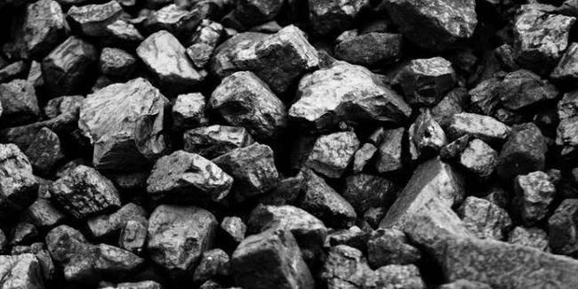 kömür sabunu faydaları