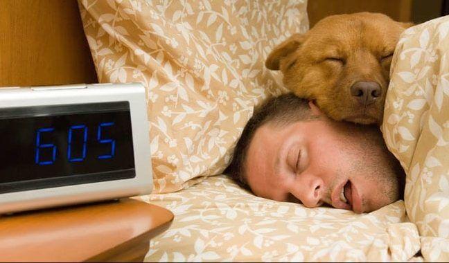 evcil hayvanıyla uyuyan adam