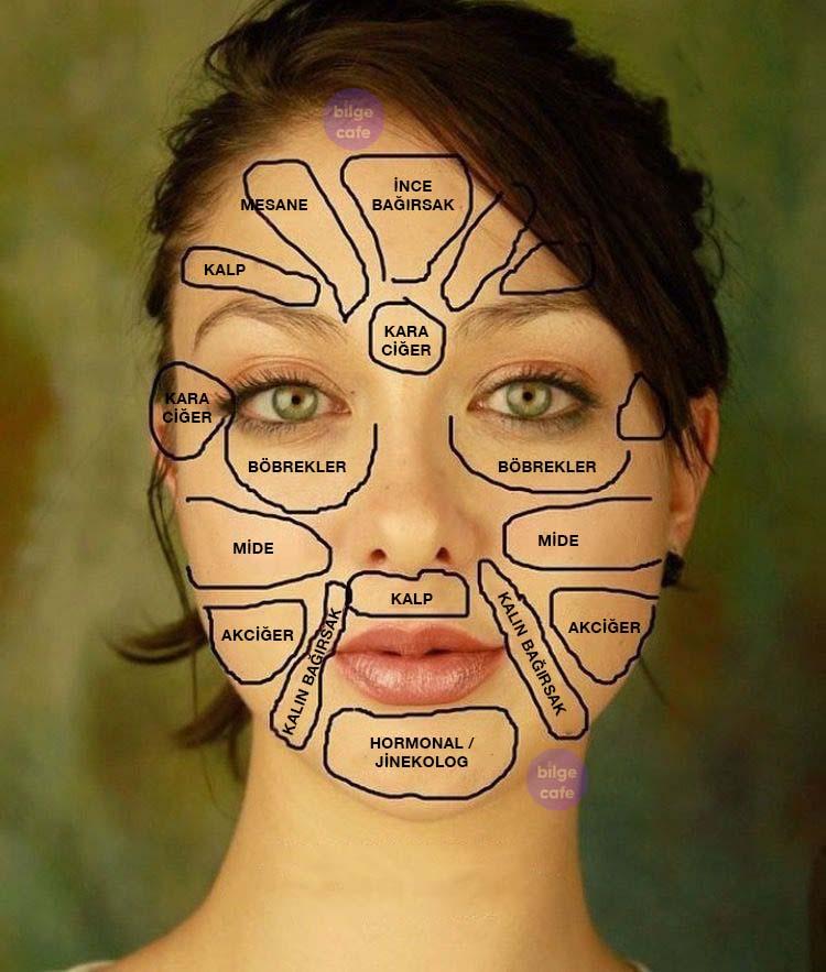 çin tıbbı yüz haritası hastalıkların teşhisi