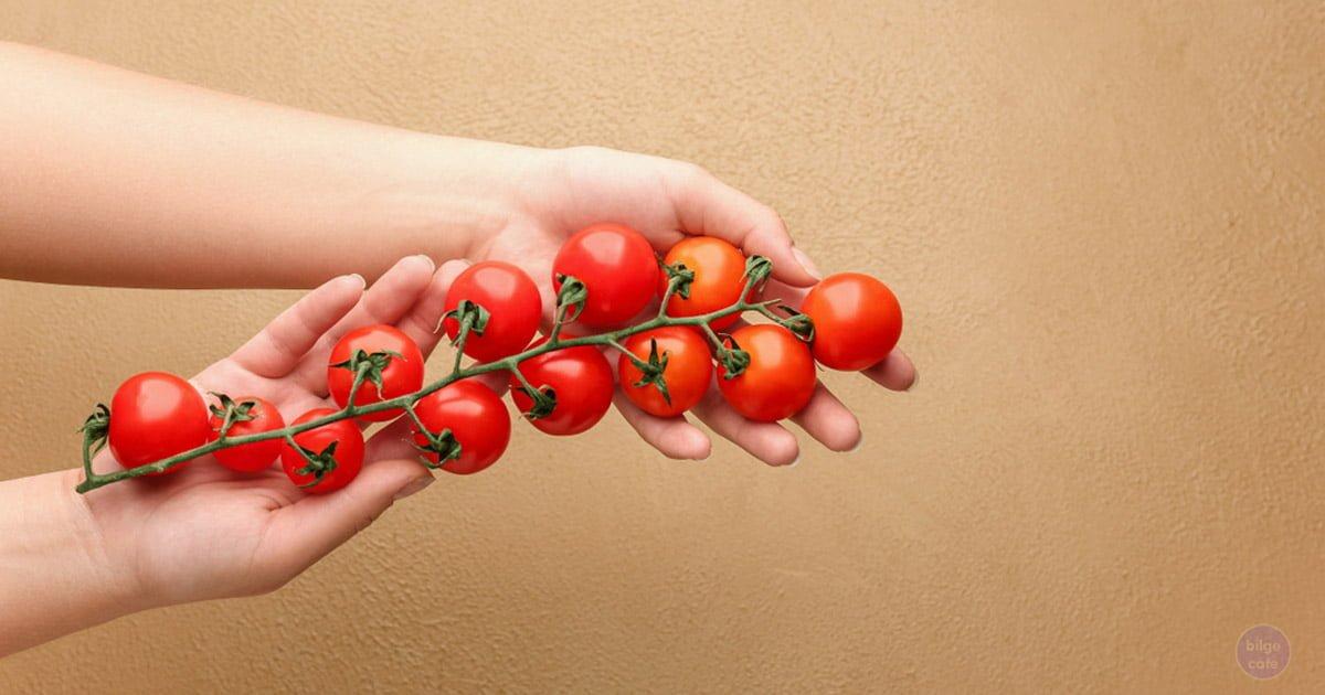 domates tuketmek zararli olabilir