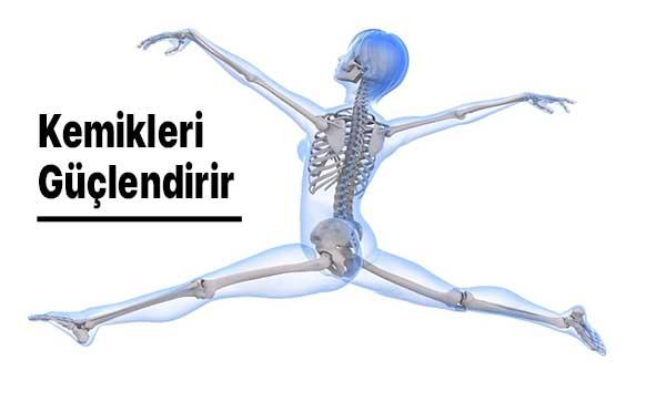 kemikleri güçlendirir