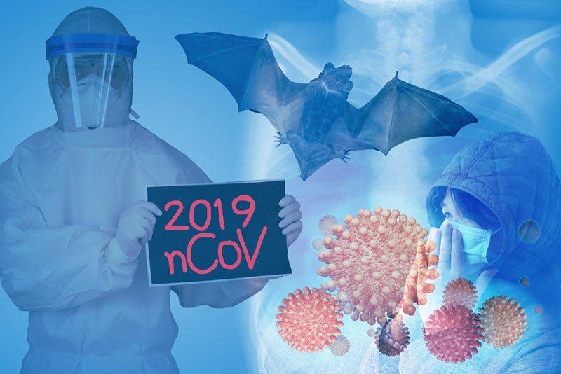 2019 da cikan virus