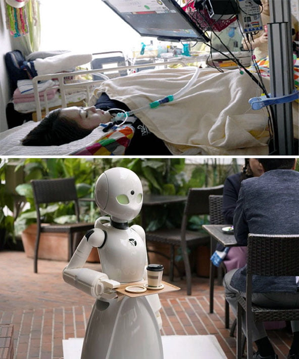 japonya robotlar
